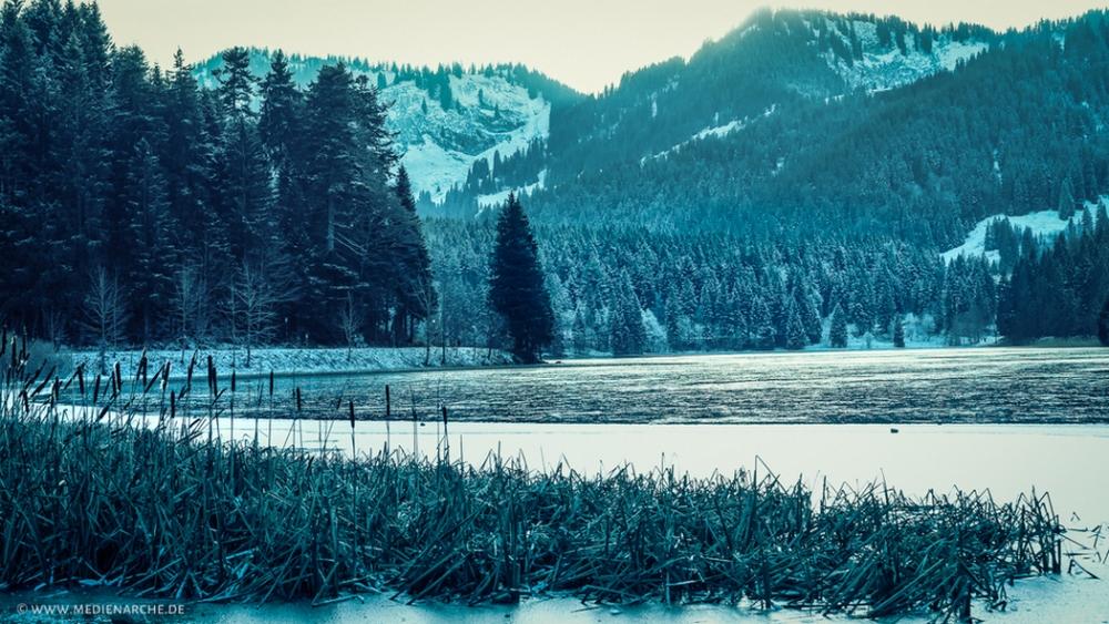 Ein zugefrorener See in einer winterlichen Berglandschaft, Schilf im Vordergrund.
